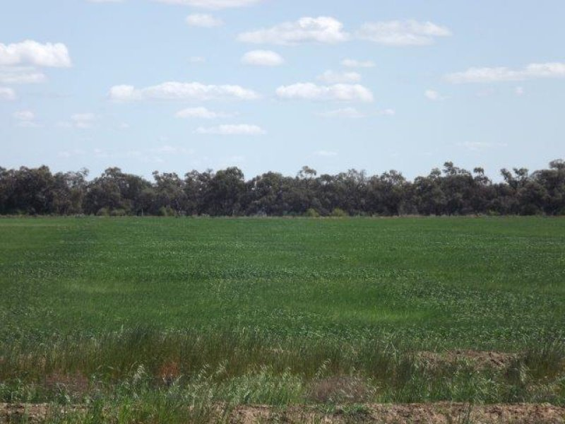 Lot 33, 282 Hartwood Road, Deniliquin, NSW 2710