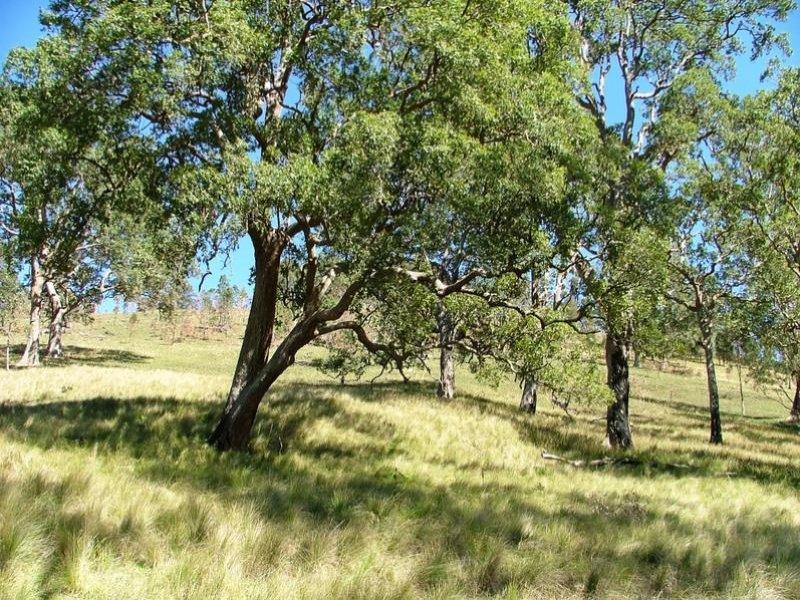 - Moppy  Road, Rawdon Vale, NSW 2422