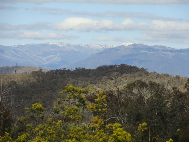 Lot 4 Larkin Lane, Upper Gundowring, Vic 3691