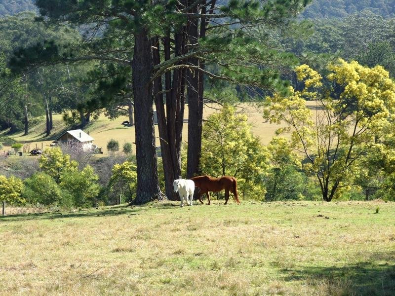 Lot 16 The River Road, Brooman, NSW 2538