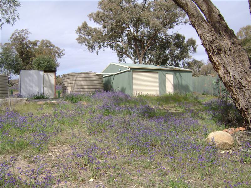 Lot 1, 211 Horton Drive, Woodstock, NSW 2538