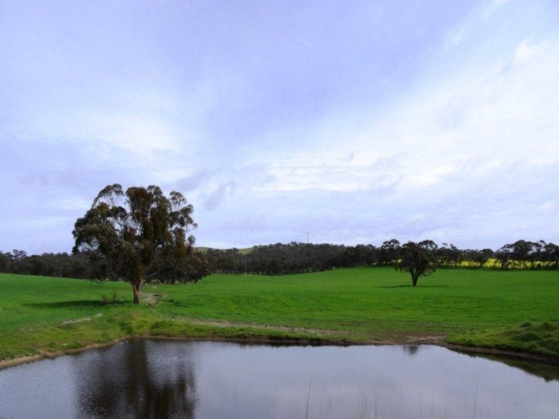 Lot 313 Murrays Road, Marrabel, SA 5413