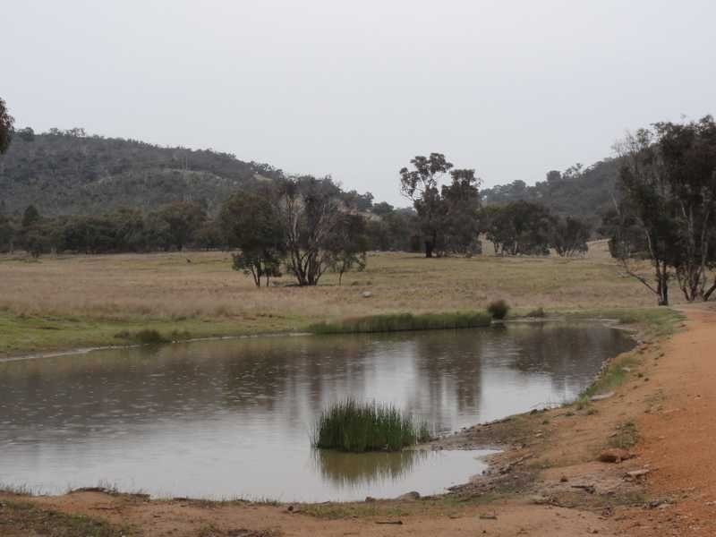 Beverley Hills Mahomets Lane, Bethungra, NSW 2590