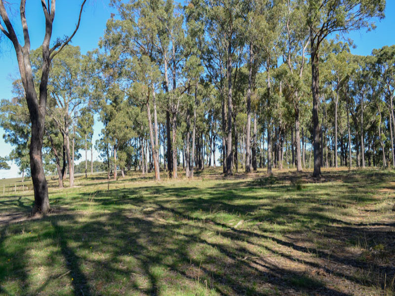 Lot 1, 260 Eacotts Road, Yellingbo, Vic 3139