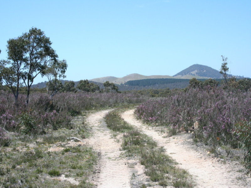 2 Farringdon Road, Braidwood, NSW 2622