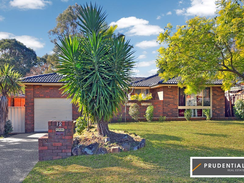 12 Geranium Avenue, Macquarie Fields, NSW 2564