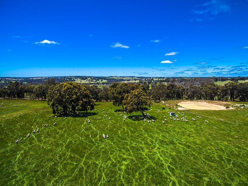 Lot 11346 Brown Seymour Road, Boyup Brook
