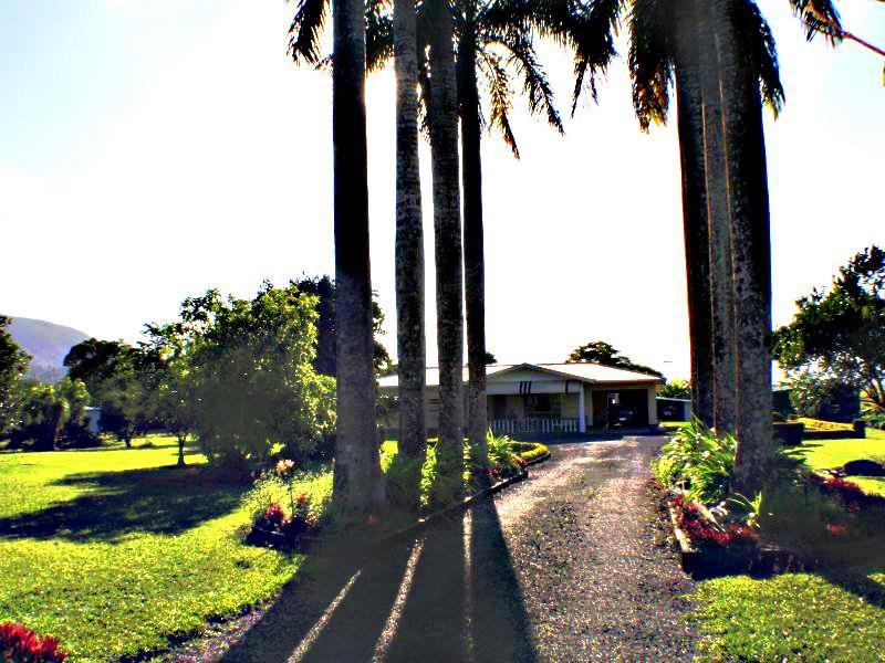 708 East Feluga Road, East Feluga, Qld 4854