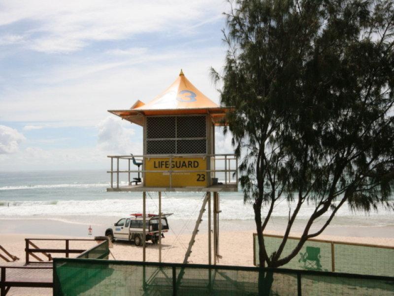 Petrel Mermaid Beach Qld