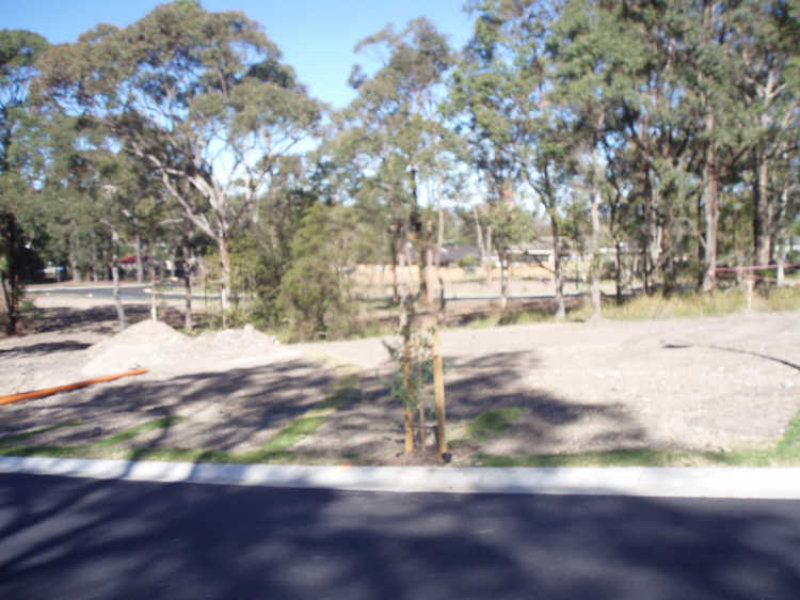 Lot 301 Floribunda Street, Floraville, NSW 2280