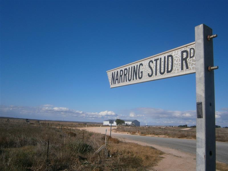 Lot 6 Narrung Stud Road, Narrung, SA 5259