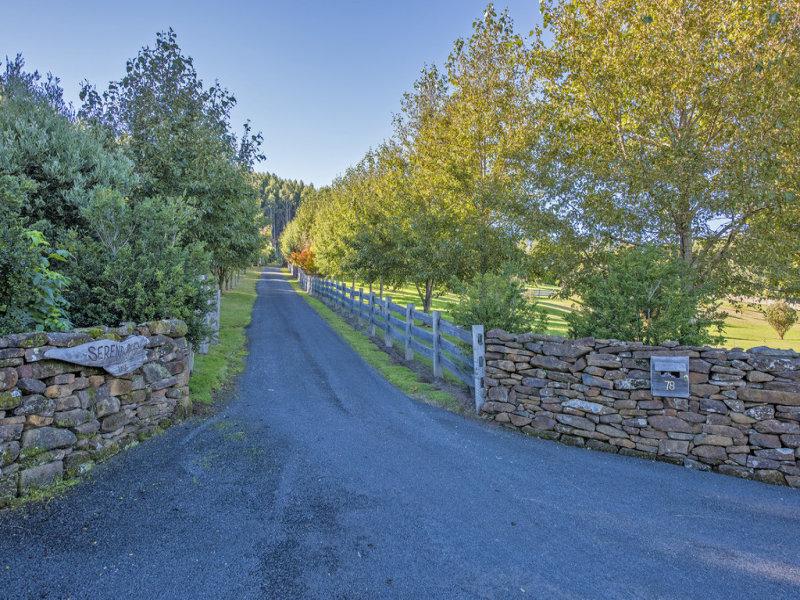 78 West Ridgley Road, Ridgley, Tas 7321