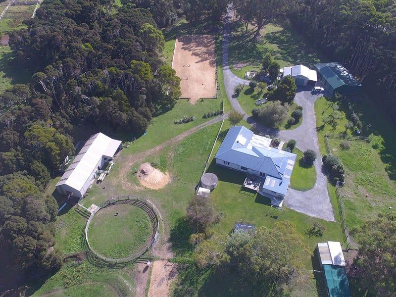 1250 Grassy Road, Pegarah, Tas 7256
