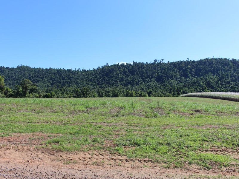 Lot 209 , Lot 209 Dixon Road, Friday Pocket, Qld 4855