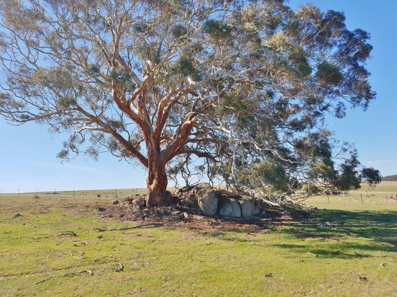 192b Boro Road, Tarago, NSW 2580