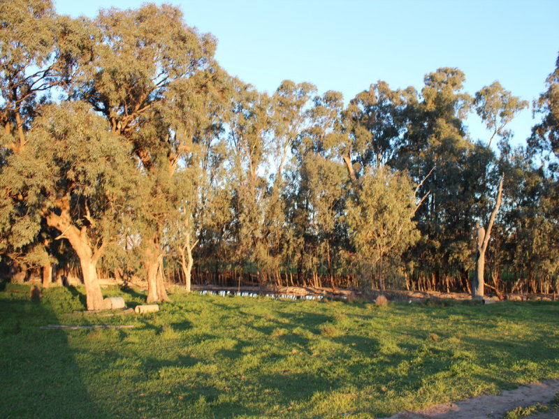 Lot 21 & Lot 4 North Barham Road, Barham, NSW 2732