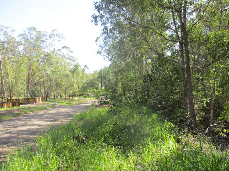 Lot 204 Arbornine Road, Glenwood, Qld 4570