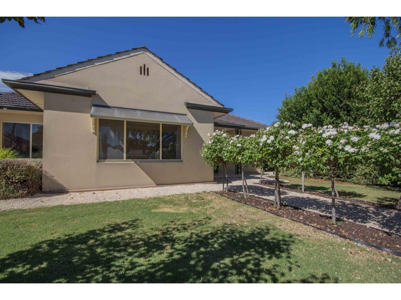 7 Ellen Street, Richmond, SA 5033
