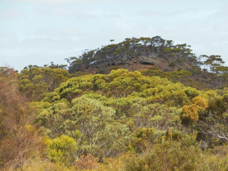 Lot 1879 Monjebup Road, Boxwood Hill, WA 6338