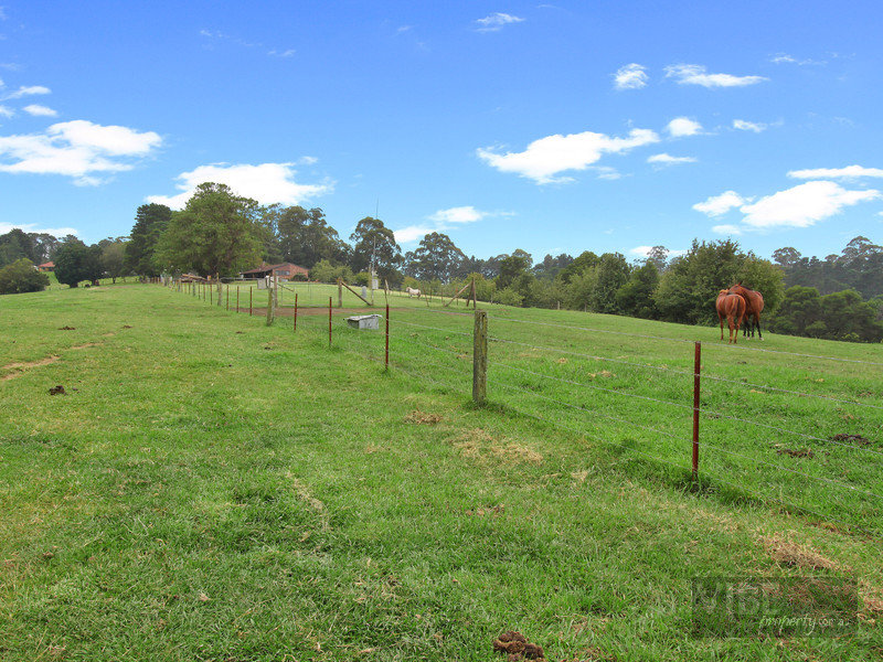 2419 Bells Line of Road, Bilpin, NSW 2758