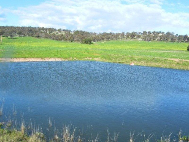 Lieschke Road, Walbundrie, NSW 2642