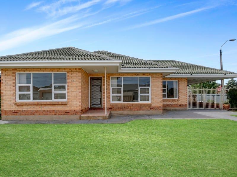 19 Dillon Avenue, Flinders Park, SA 5025