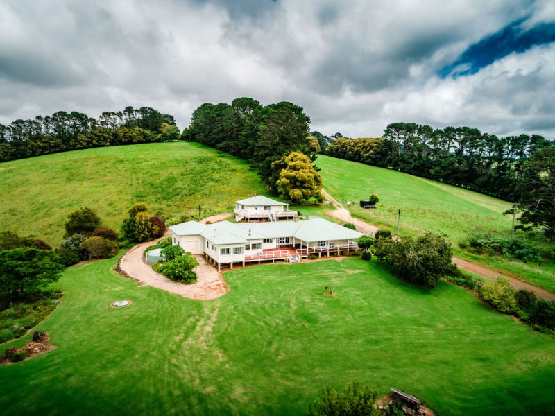 591 Shephards Road, Dorrigo, NSW 2453