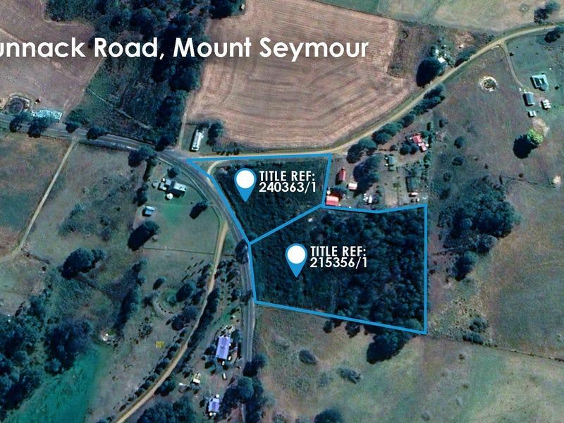 Lot 1 Tunnack Road, Mount Seymour, Tas 7120