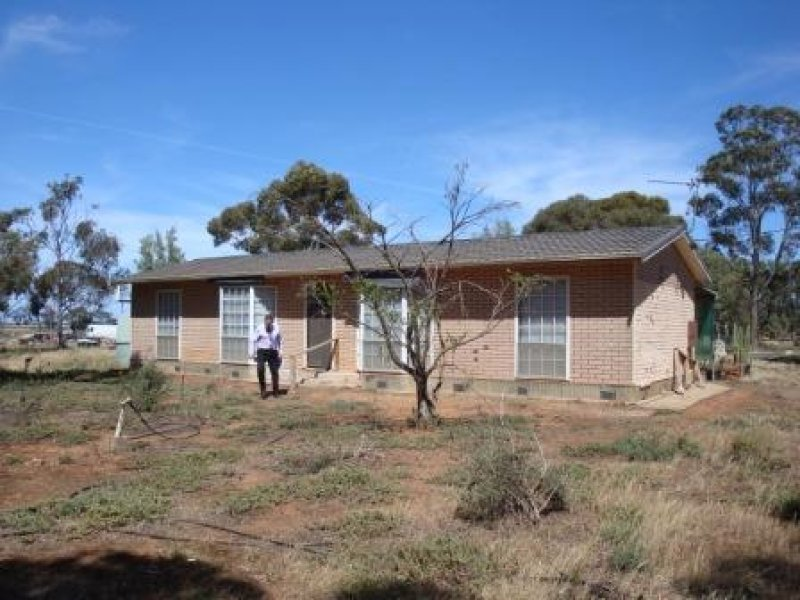 595 Williams Road, Two Wells, SA 5501