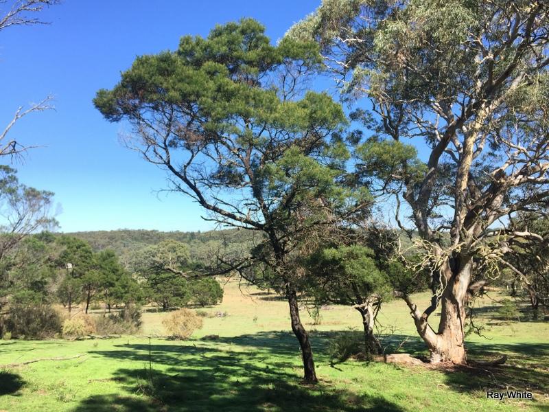 243 Jacquet Road, Nerriga, NSW 2622