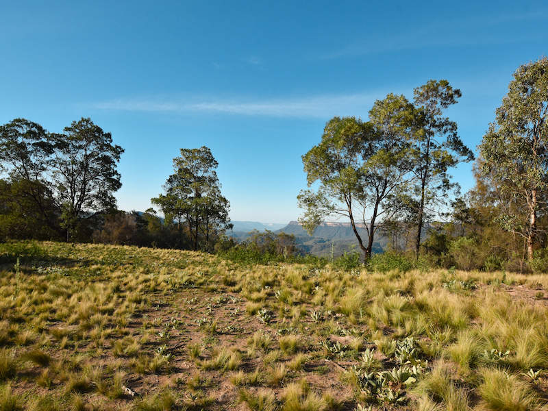 130 O'Briens Road, Bullio, NSW 2575
