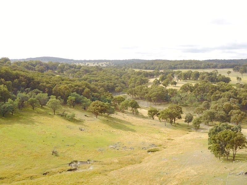 294 Reedy Creek Road, Guyra, NSW 2365