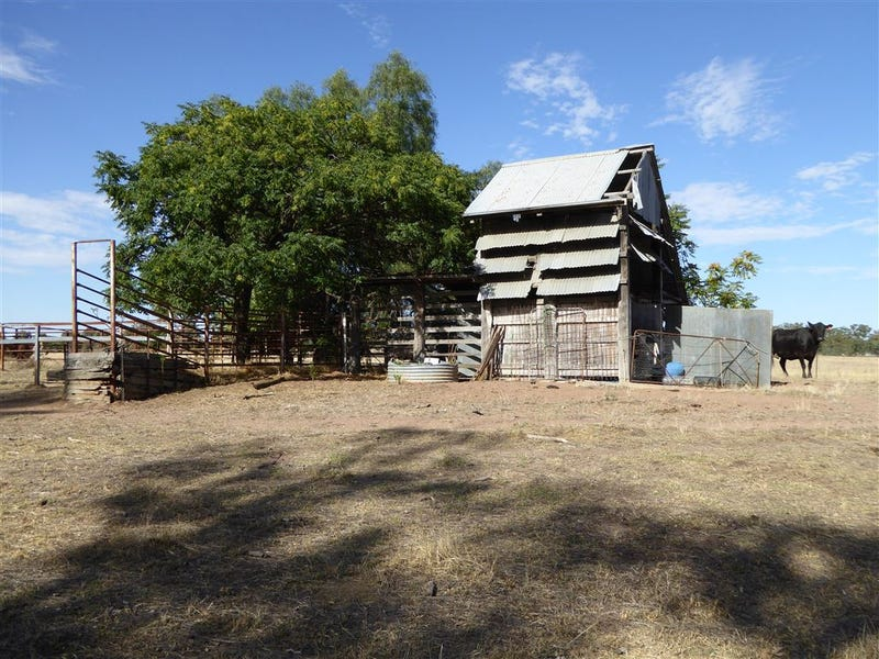 2311 Pleasant Hills Road, Henty, NSW 2658