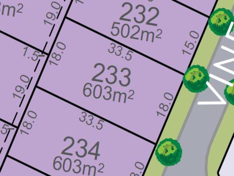 Lot 233, Vine Street, Chisholm, NSW 2322