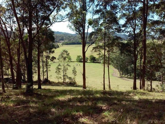 2 Fig Tree Lane, Yandina Creek, Qld 4561