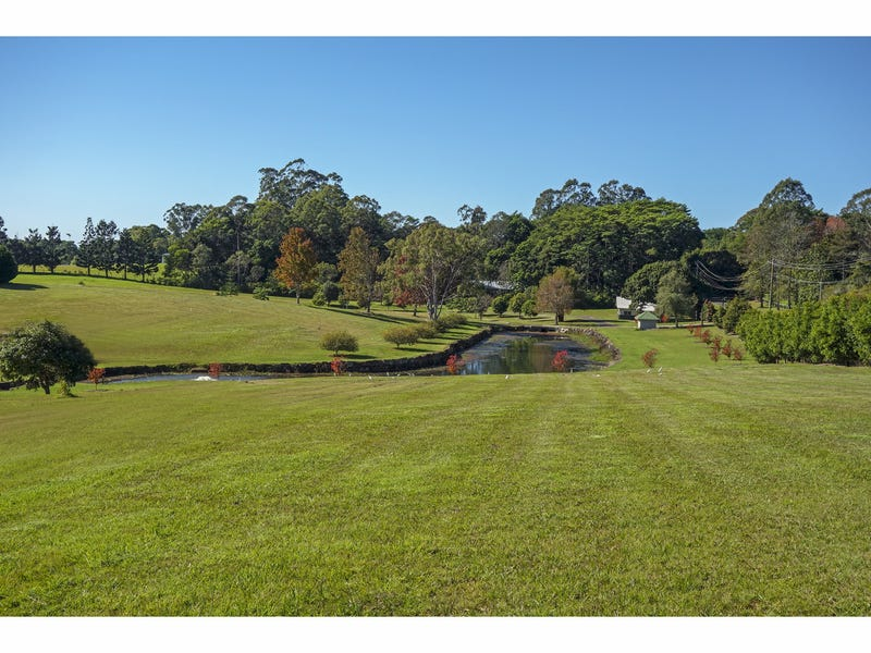 11 White Gum Place, North Maleny, Qld 4552