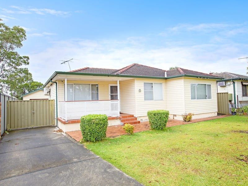 19 Shamrock Street, Smithfield, NSW 2164