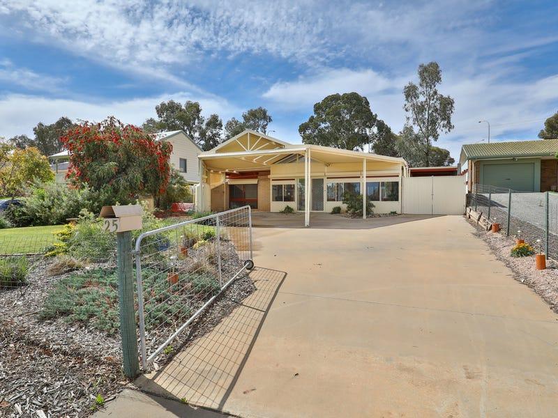 25 Riverview Drive, Dareton, NSW 2717