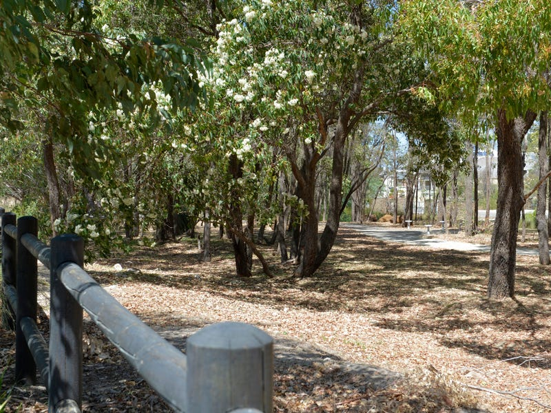 Lot 352, Moorland Crescent, The Vines, WA 6069