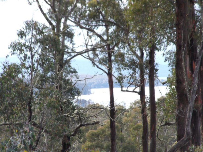 Lot 3 Poatina Road, Arthurs Lake, Tas 7030