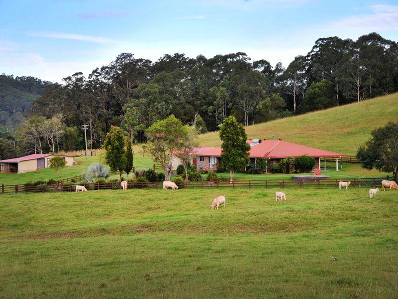 660D Upper Orara Road, Upper Orara, NSW 2450