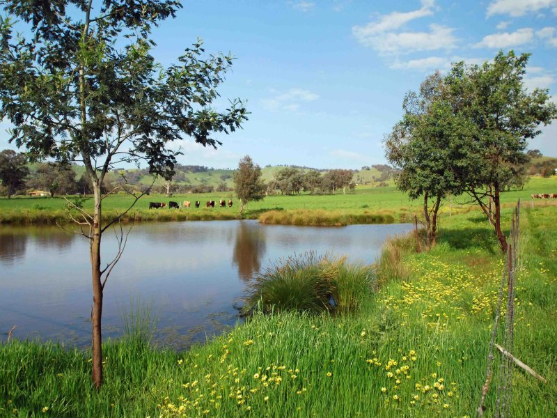 60 Mares Flat Road, Indigo Valley, Vic 3688
