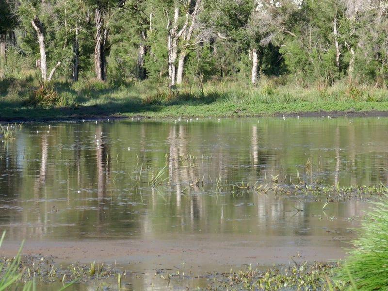 400 Phillips Swamp Road, Busbys Flat, NSW 2469