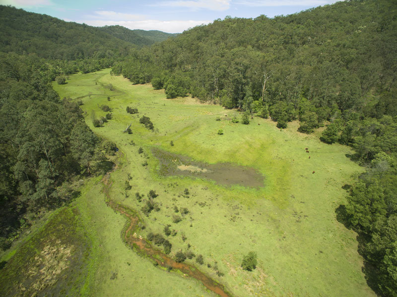 1 Upper Mangrove Creek Road, Mangrove Creek, NSW 2250