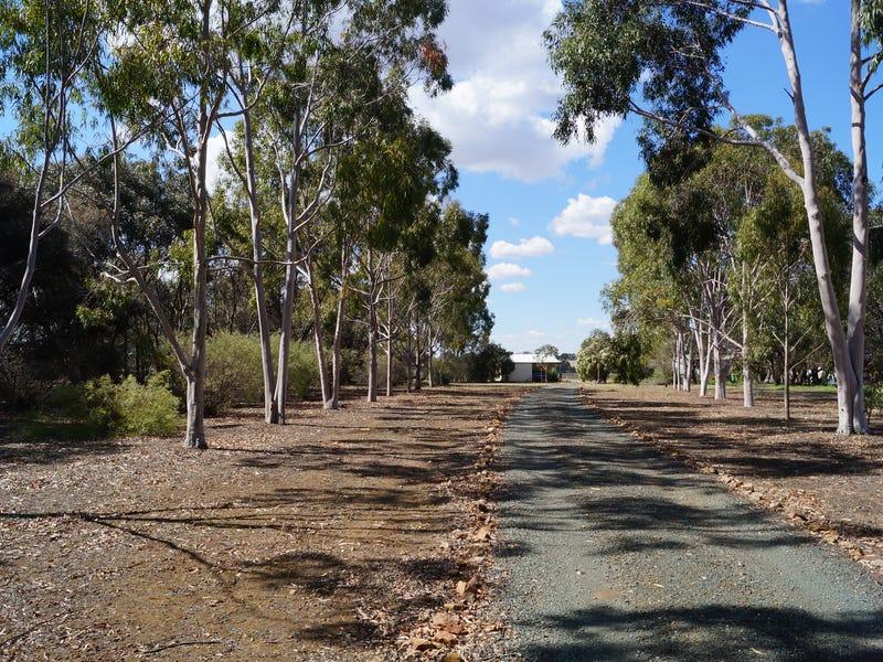 81 Waranga Basin Road, Waranga Shores, Vic 3612