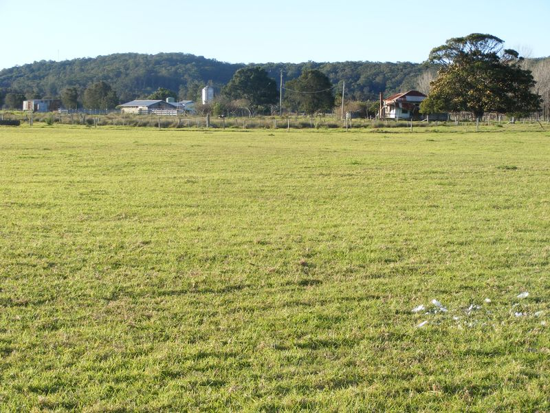 193 Boyters Lane, Jerseyville, NSW 2431