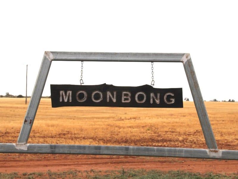 Moonbong Aggregation, Pallamallawa, NSW 2399