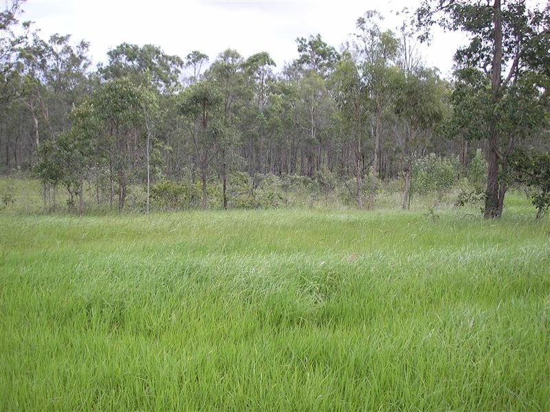 Lot 418, Windmill Close, New Beith, Qld 4124