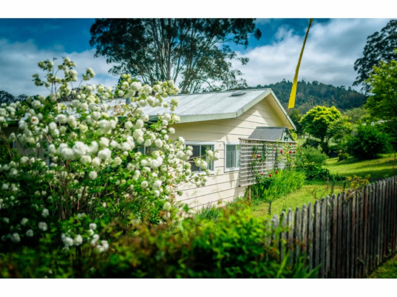25 Richards Road, Dorrigo, NSW 2453