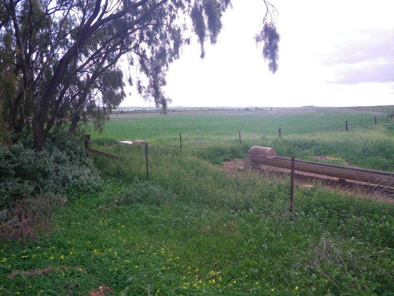 Gladstone Caltowie Road, Gladstone, SA 5473